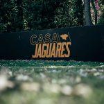 casa-jaguares6